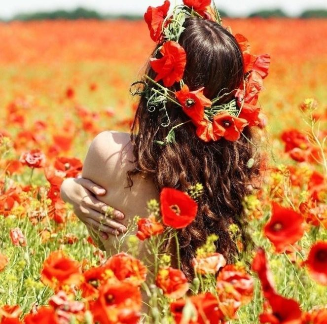 cropped-girl-red-poppy-field-1080x1920-wallpaper21.jpg