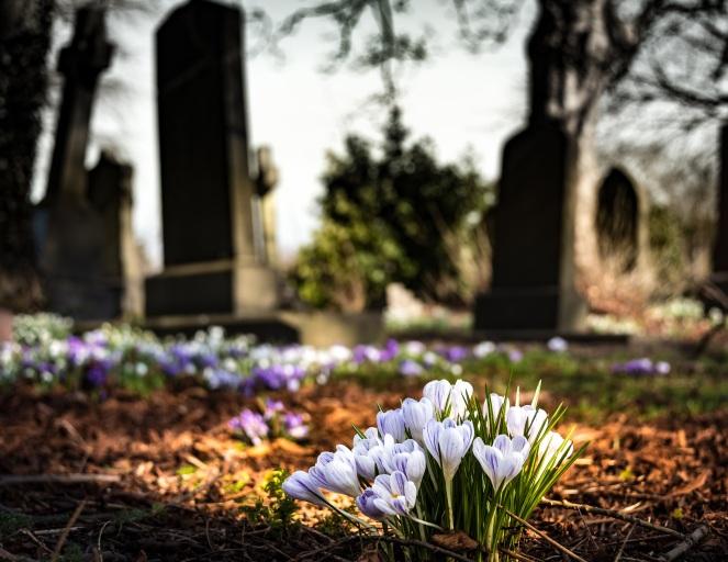 graveyard-1417871