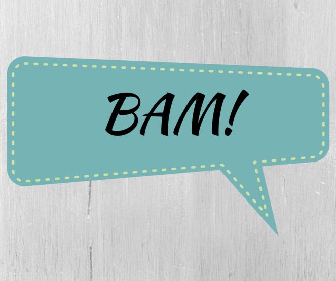 bam-1