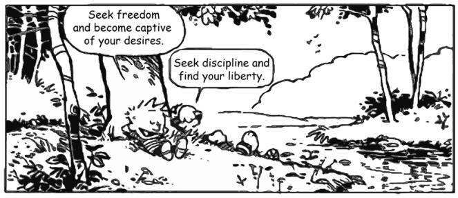 calvin and hobbes discipline